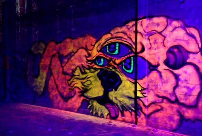 vinnikiniki-black-light-graffit-art