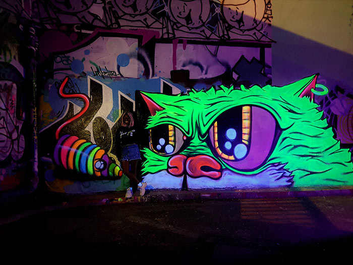 black light street art mural of glowing green cat with rainbow toy